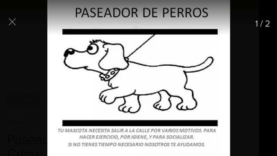 Paseador De Perros Alfonso Xiii