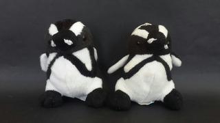 Lote X2 Pinguinos De Peluche - Los Germanes