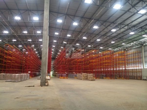 Galpao Industrial - Zona Industrial - Ref: 4391 - L-4391
