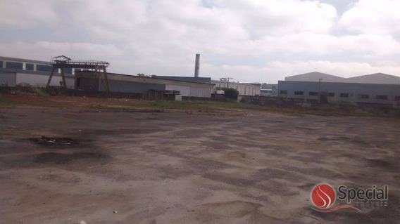 Terreno Para Locação, Vila Nova Bonsucesso, Guarulhos - Te0668. - Te0668