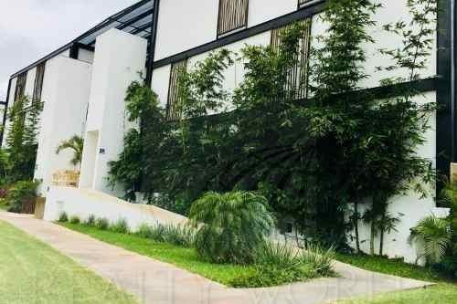 Departamentos En Renta En Algarrobos Desarrollo Residencial, Mérida