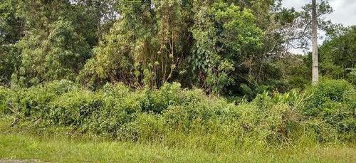 Terreno No Litoral Com 363 M² Em Itanhaém/sp 4196-pc
