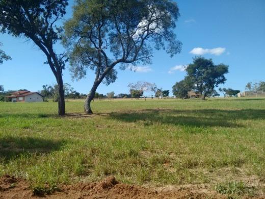 Venda Terreno Em Ariquemes-rondonia - 144