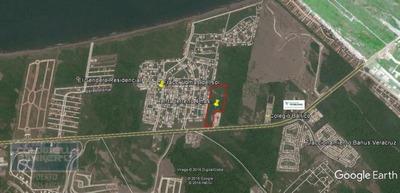 Terreno En Renta, Alvarado, Veracruz