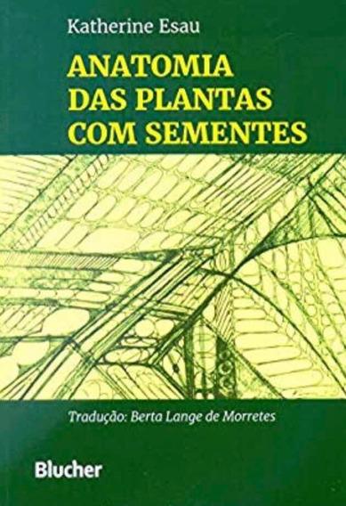 Anatomia Das Plantas Com Sementes