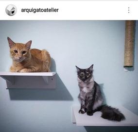 2 Prateleiras Para Gatos