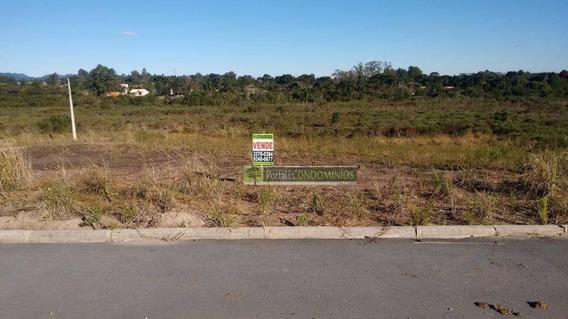 Terreno À Venda, 5349 M² Por R$ 320.000,00 - Centro - Quatro Barras/pr - Te0502