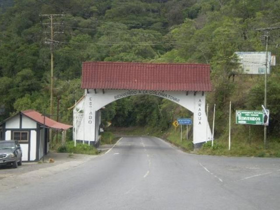 Terreno En Venta Colonia Tovar Mls 19-5952 Cc