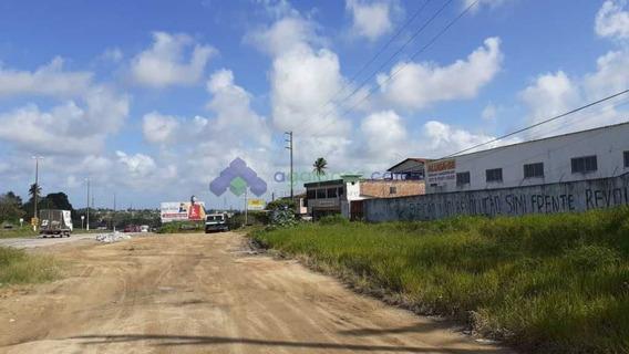 Galpão Com 3.100 M² Na Br 101 Em Igarassu - Pe. Excelente Local! - 512