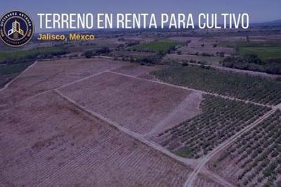 Terreno Para Cultivo Con Canal De Agua Propio