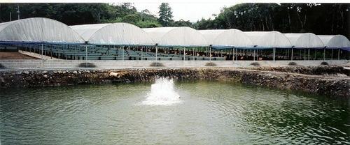 sitio160.000m2,estrutura criação peixes de graça 30km praia
