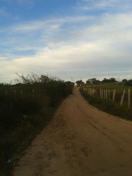 Oportunidade! Terreno No Distrito Maria Quitéria - 95