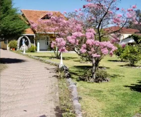 Preciosa Casa Con Terreno 2500 Mts En Pifo. Precio Negociab