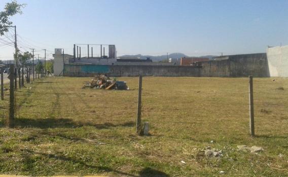 Terreno Em Jundiapeba, Mogi Das Cruzes/sp De 0m² Para Locação R$ 4.500,00/mes - Te441641