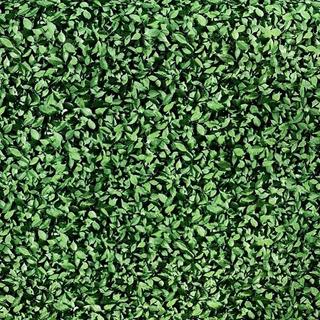 Kit Tecido Jacquard Muro Inglês 6x2.80 + 6m Verde Grama