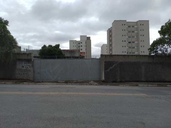 Terrenos - Urbano - 1071