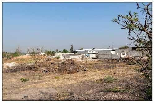 Terreno En Venta - El Castillo - Te288