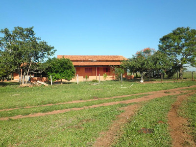 Chácara Em Zona Rural, Nazario/go De 300m² 4 Quartos À Venda Por R$ 2.210.000,00 - Ch239036