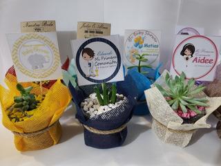 Recuerdos Plantas Suculentas Decoracion Personalizada
