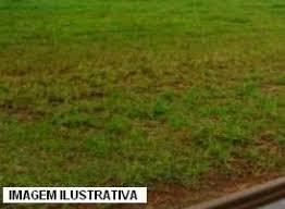 Terrenos Em Aruja 35 000,00 Últimos Lotes Bom Para Lazer Co