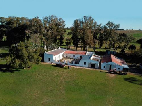 Campo En Venta En Rocha Ref.: 7125