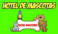 Hotel Y Guardería Para Mascotas