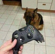 Reparacion De Contoles Gamer
