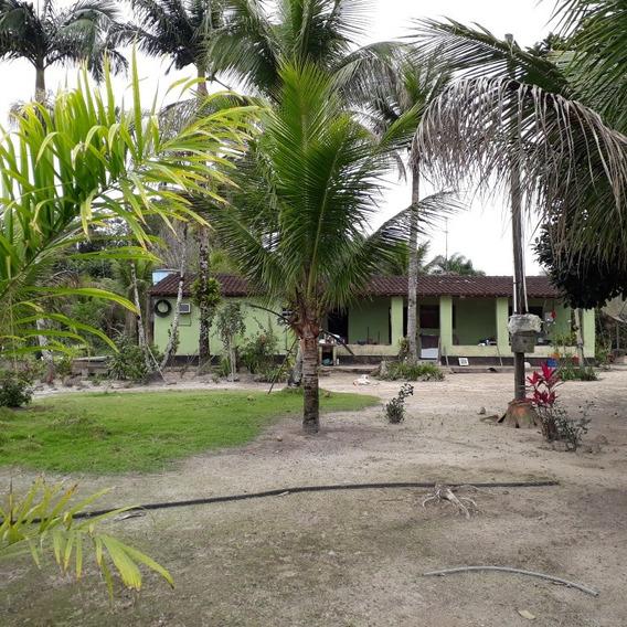 Sítio Em Iguape