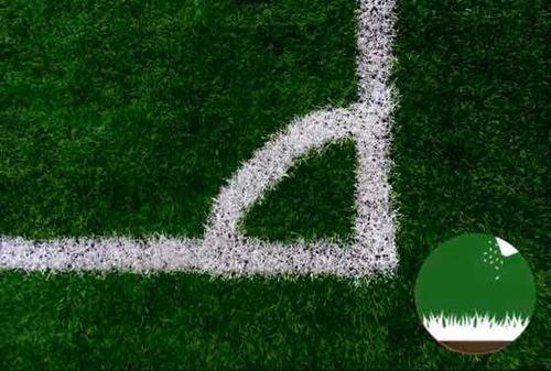 Imagen 1 de 10 de Semillas Césped Perenne - Verde Todo El Año - Envío Gratis