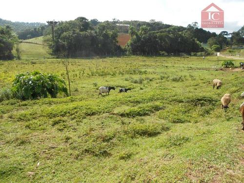 Terreno À Venda, 2000000 M² Por R$ 450.000,00 - Bairro Dos Neves - Cotia/sp - Te0081