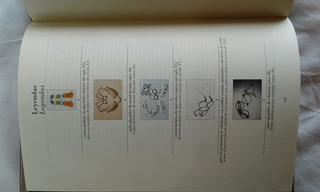 Óptica. Anteojos. Libro Catálogo Del Museo Luxotica.