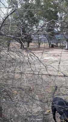 Venta De Terrenos Baratos En San Luis Potosi En Terrenos En Venta En