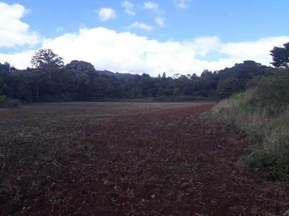 Finca En Rancho Arriba, San José De Ocoa