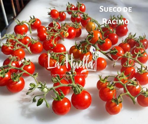 Semillas Agro-ecológicas De Tomates - Reliquias/exóticos