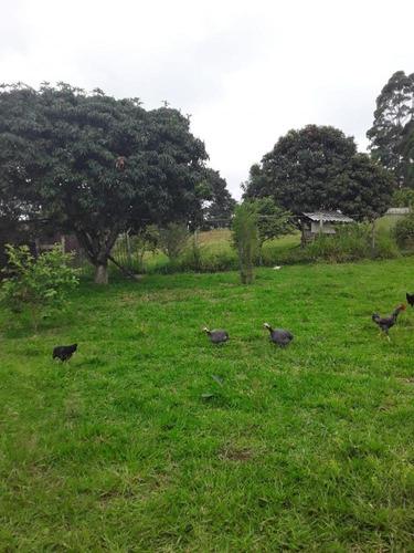 Imagem 1 de 23 de Terreno 1.600m² - Chácaras Monte Verde - São Roque Sp - Tr141053v