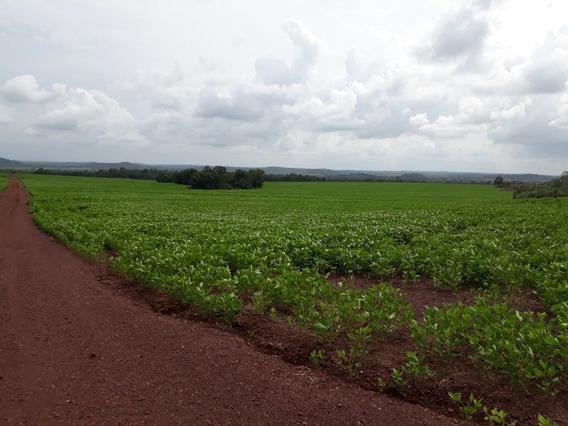 Vendo Troco Por Imoveis Fazenda No Tocantins ( 4199 )