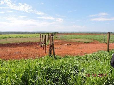 Fazenda Para Agricultura Em Dourados-ms -logística Excelente - 878