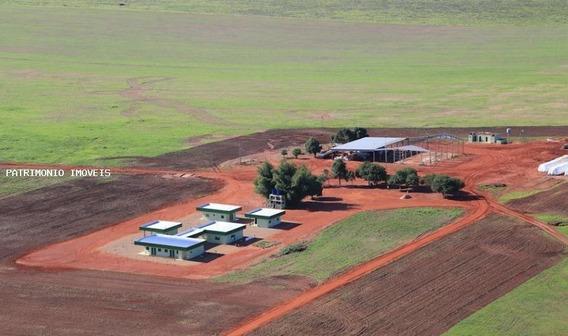 Fazenda Para Venda Em Primavera Do Leste, Fazenda Na Região De Primavera Do Leste - Mt - 31788_2-809871