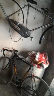 Bicicleta Rutera Carrera Campagnolo 28