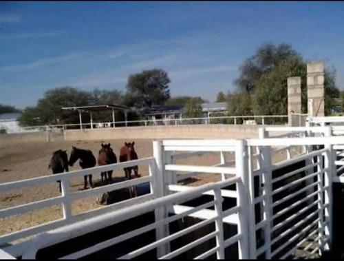 Excelente Rancho En Venta En Aguascalientes Con Lienzo  A 10
