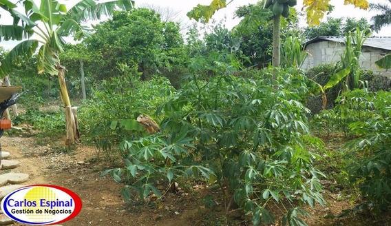 Finca De Venta En Higuey, República Dominicana