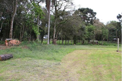 Área À Venda Com 12100m² Por R$ 3.100.000,00 No Bairro Thomaz Coelho - Araucária / Pr - Te0196