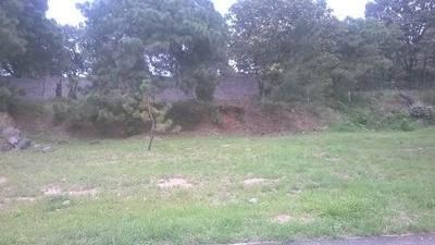 Diana Natura Residencial Terreno : Lote 12 Manzana M