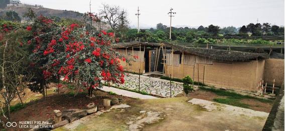 Pachacamac Area De Campo