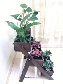 Floreira Tipo Escada Com 3 Degraus. Jardim Vertical