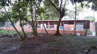 Chácara Em Itanhaém Ficando 1500m Da Pista Ref 4073