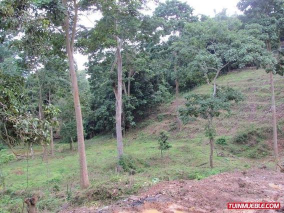 1 Terrenos En Venta 19-2531 El Hatillo