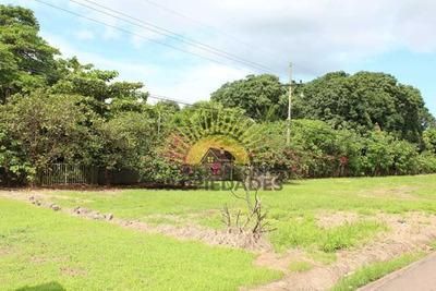 Terreno Industrial En Venta Frente A Ruta 27 En Ceiba