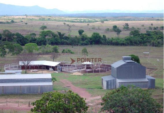 Fazenda No Município De Niquelândia - Fa0005