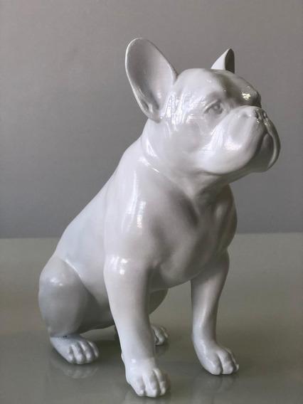 Bulldog Francês Cachorro Para Consultório Decoração 3d